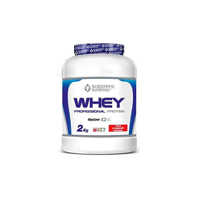 PROFESSIONAL WHEY PROTEIN 2Kg