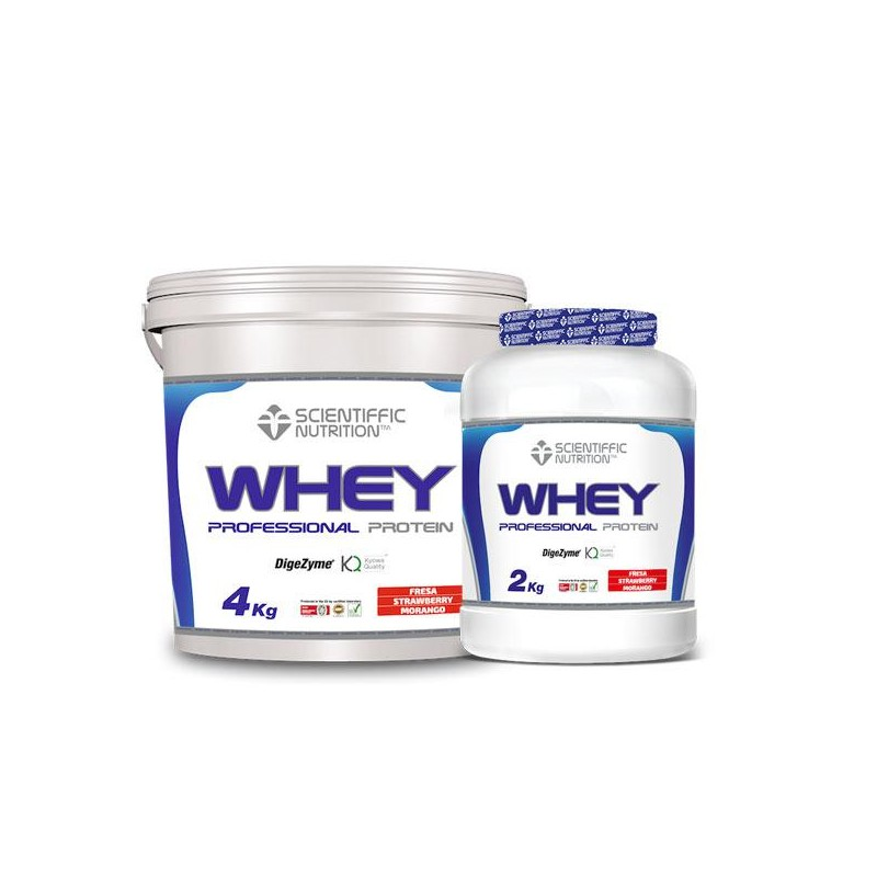 PROFESSIONAL WHEY PROTEIN 4Kg
